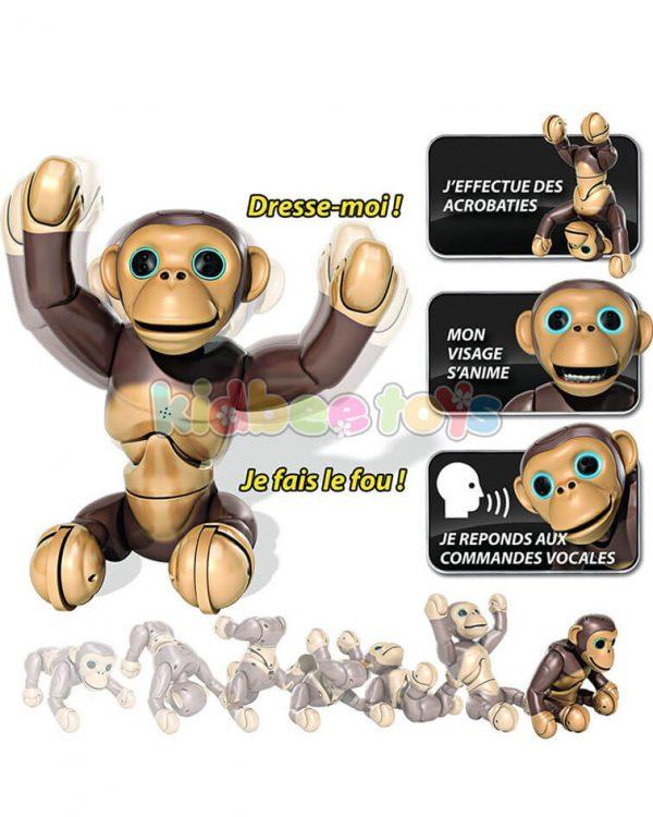 ربات میمون بازیگوش زومر